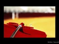 6-elisa_muriana_-_sangre_y_arena